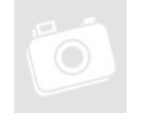 Vidáman vonatozó állatok falmatrica csomag